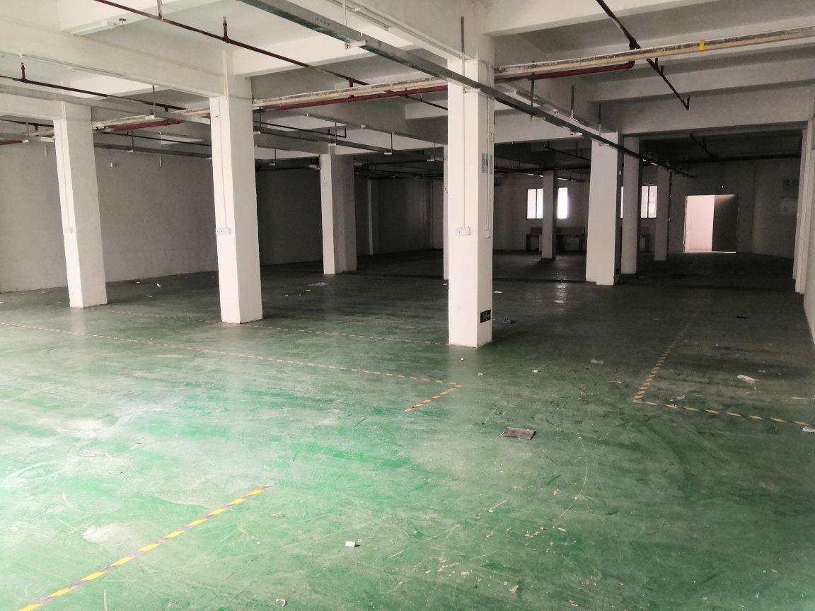爱联嶂背一楼1100平米厂房仓库出租,可以分租
