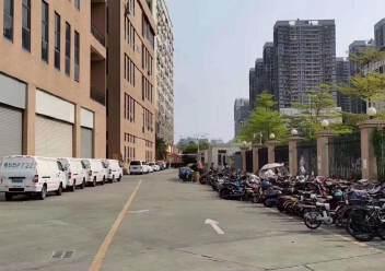 龙华清湖独门独院仓库厂房23000平带整层精装修无尘车间可分图片8