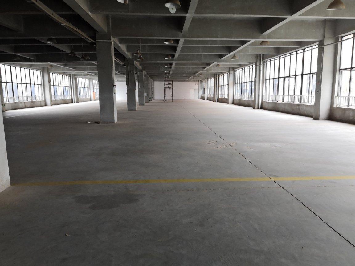 三水乐平园区顶楼1600平标准万博app官方下载,适合做喷涂行业