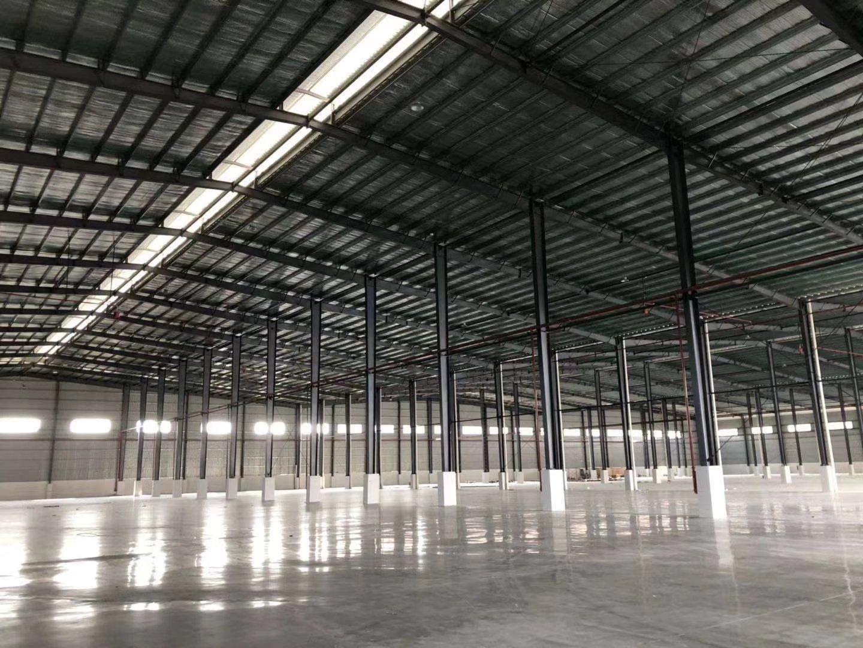 东莞丙类单一层仓库滴水12米面积17500平米