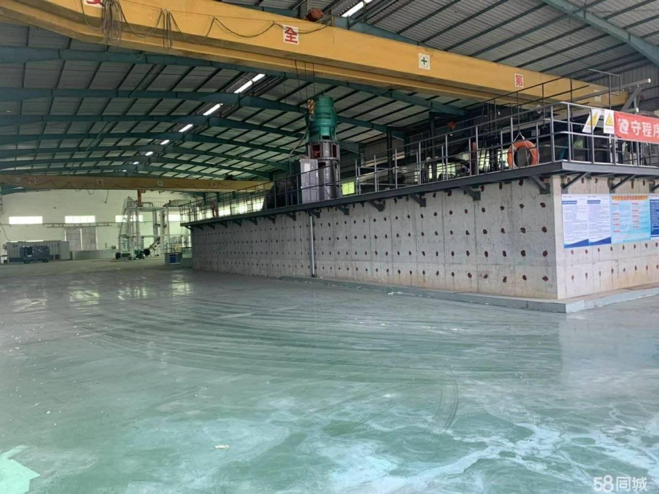 龙岗独院钢构厂房出租3980平米滴水8米龙岗钢结构仓库出租