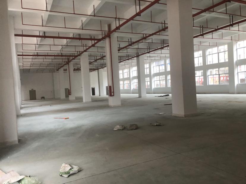 镇隆一楼7米标准厂房出租2000平方