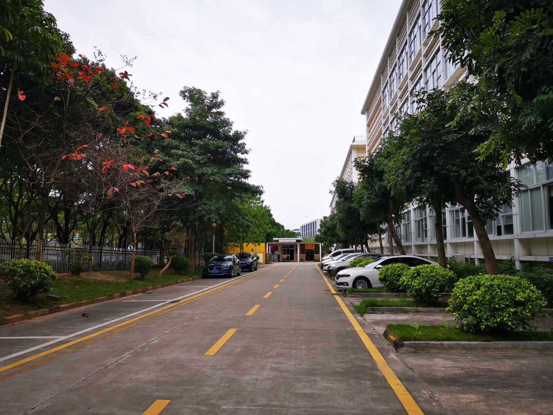 真实房源•欢迎来电新塘国有双证14000平独院厂房出售