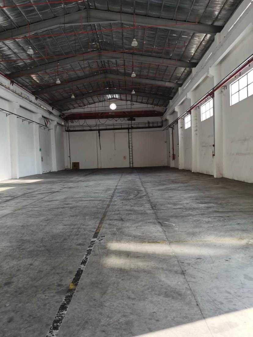 麻涌镇新出单一层钢结构物流仓4000方