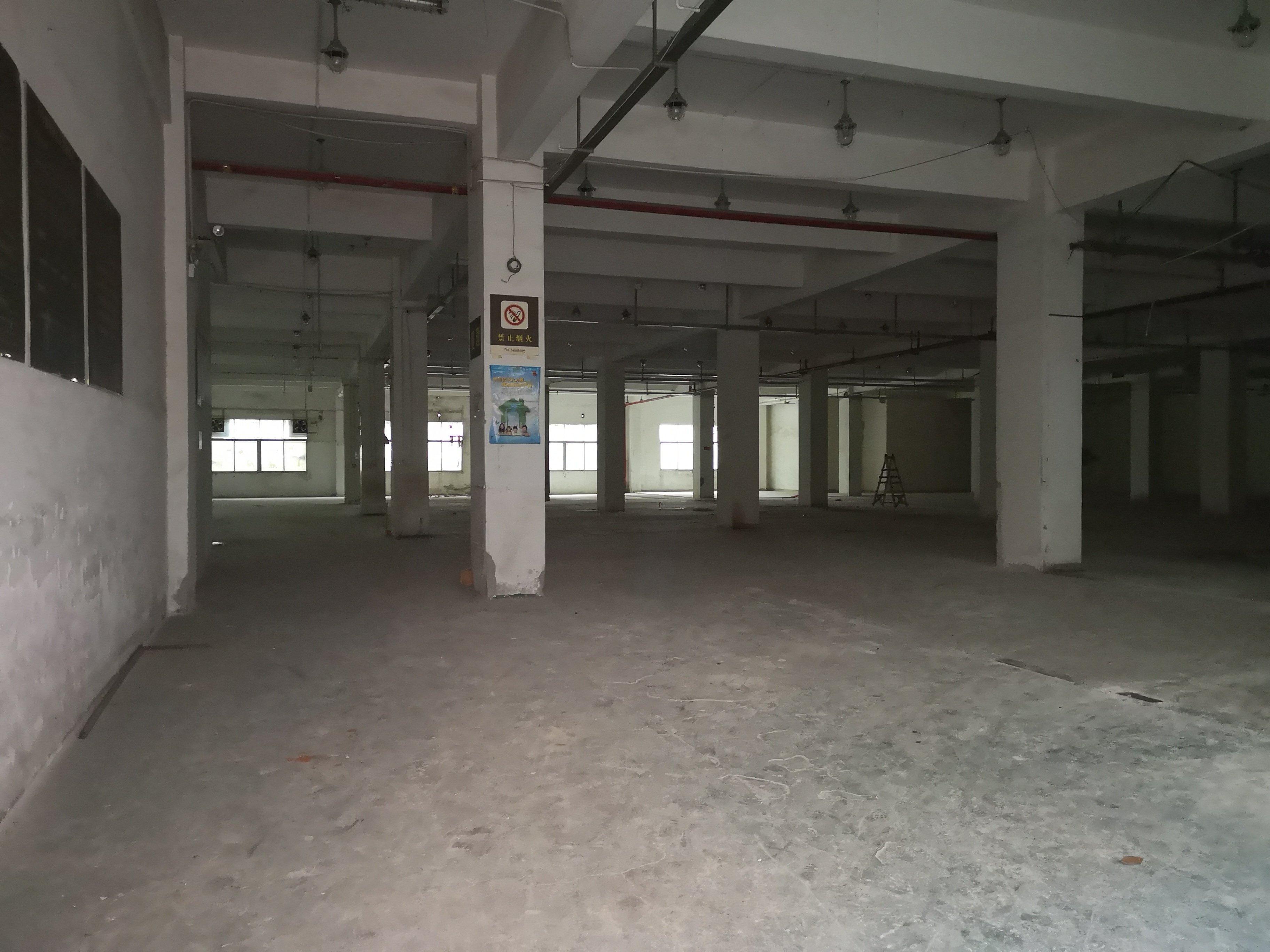 出租木棉湾500平米办公仓库生产厂房招租