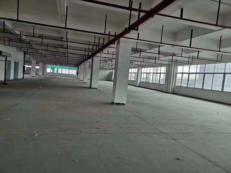 石岩物流园新出1900平方仓库出租,带卸货平台,可分租