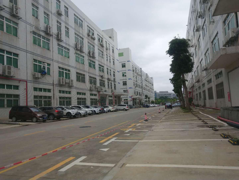 石岩塘头2000平厂房出租,可做贸易仓库小生产270平起分