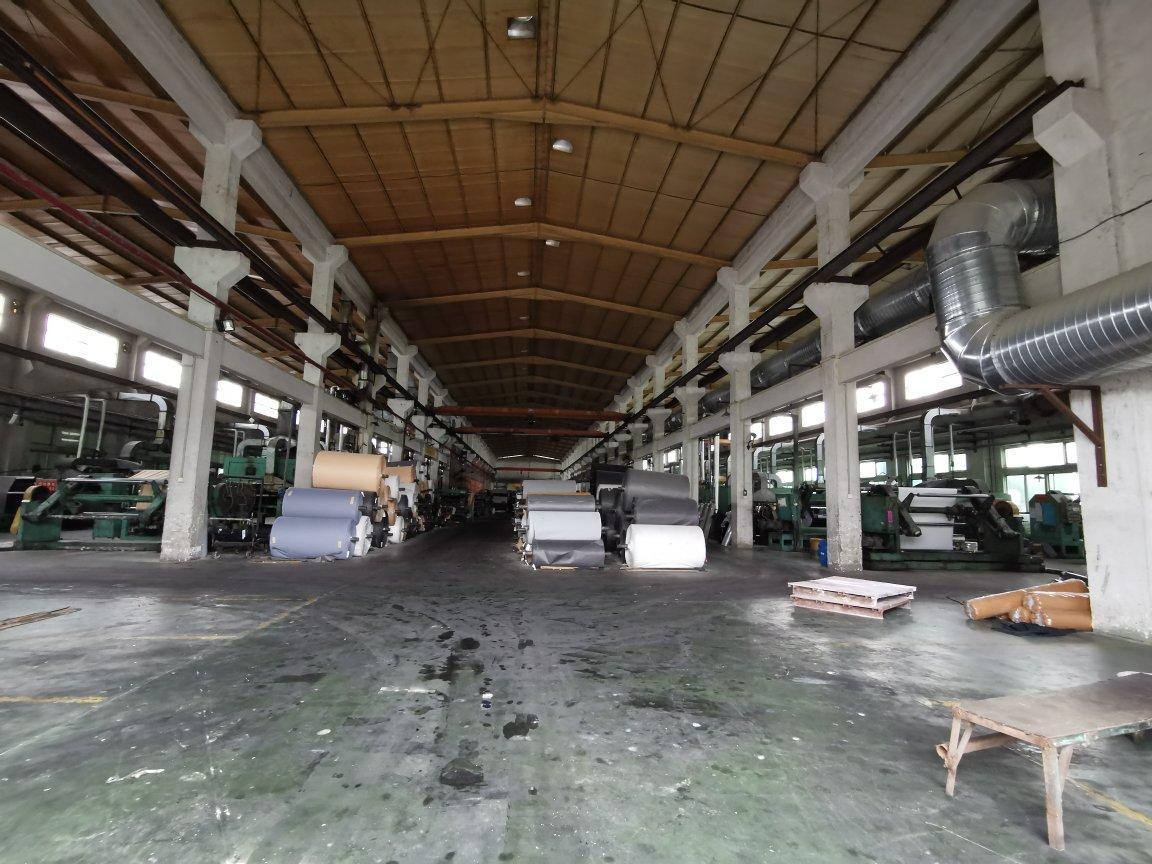 惠东县吉隆镇26000平独门独院单一层钢构厂房出租-图3