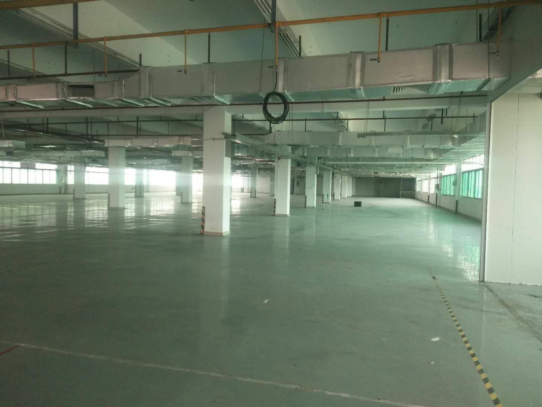 高埗镇标准万博app官方下载现成装修3楼3000平方出租