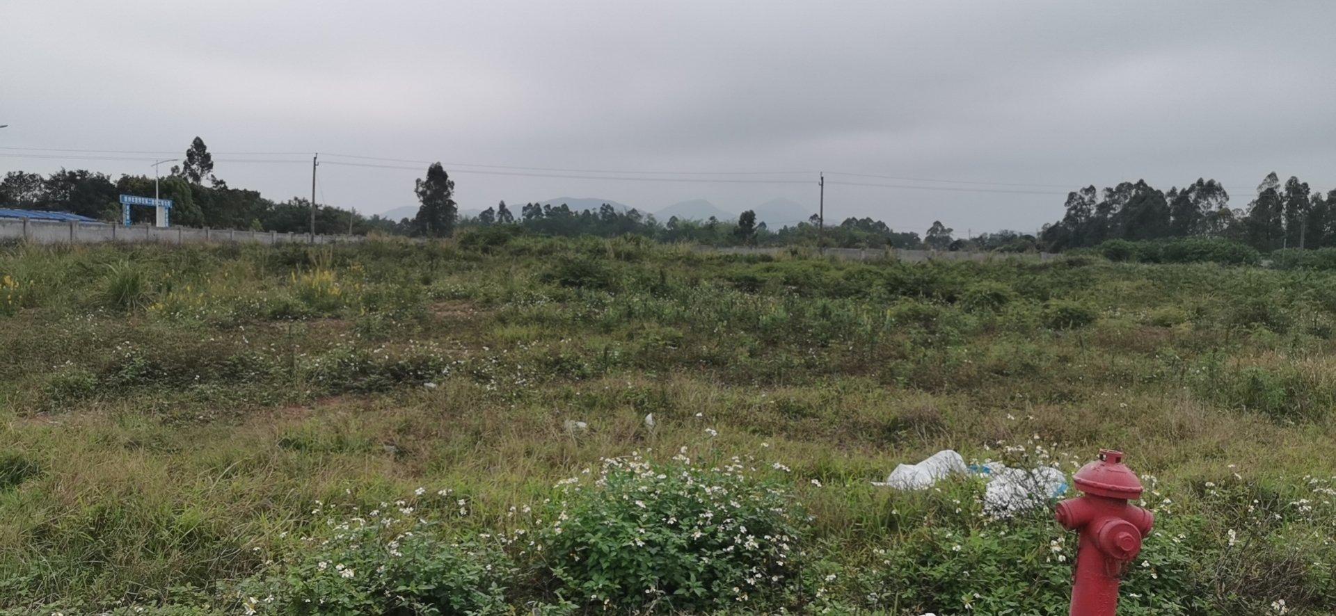 惠阳区永湖镇占地40000㎡国有证化工用地出售