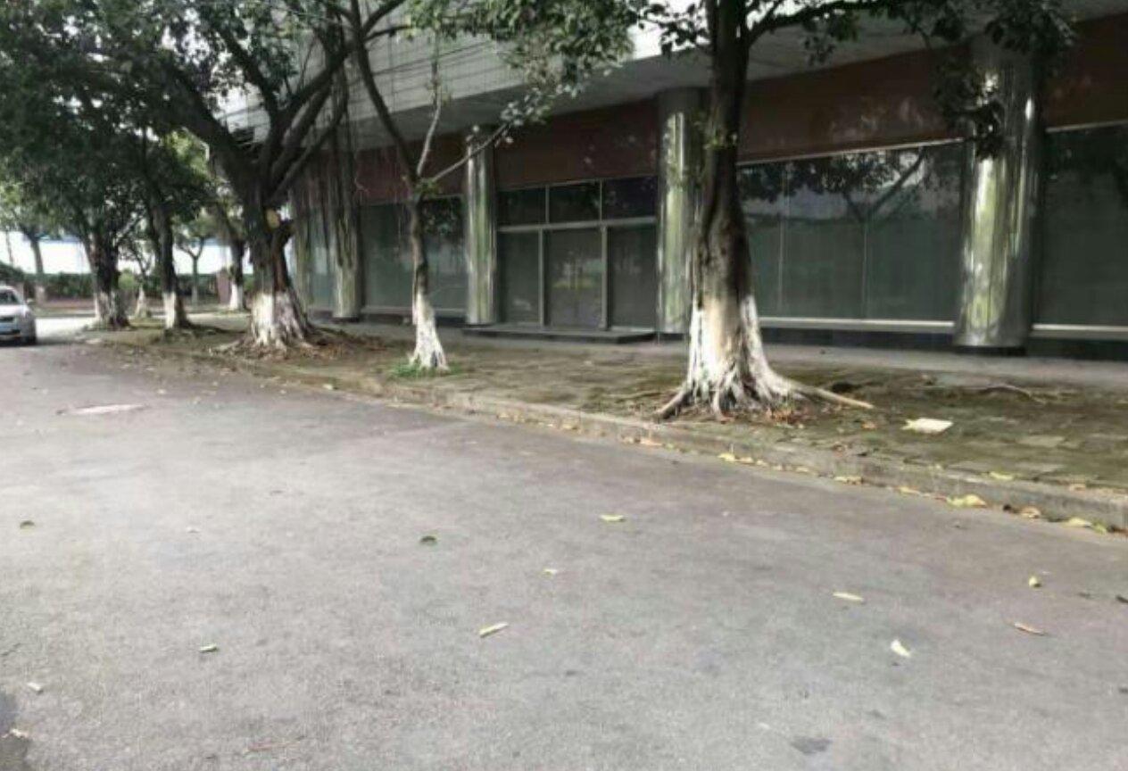 黄埔保税区国有证标准厂房低价出售可随时清场