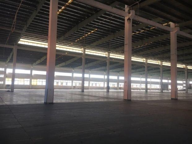 大良五沙工业园原房东单一层厂实际面积房出租