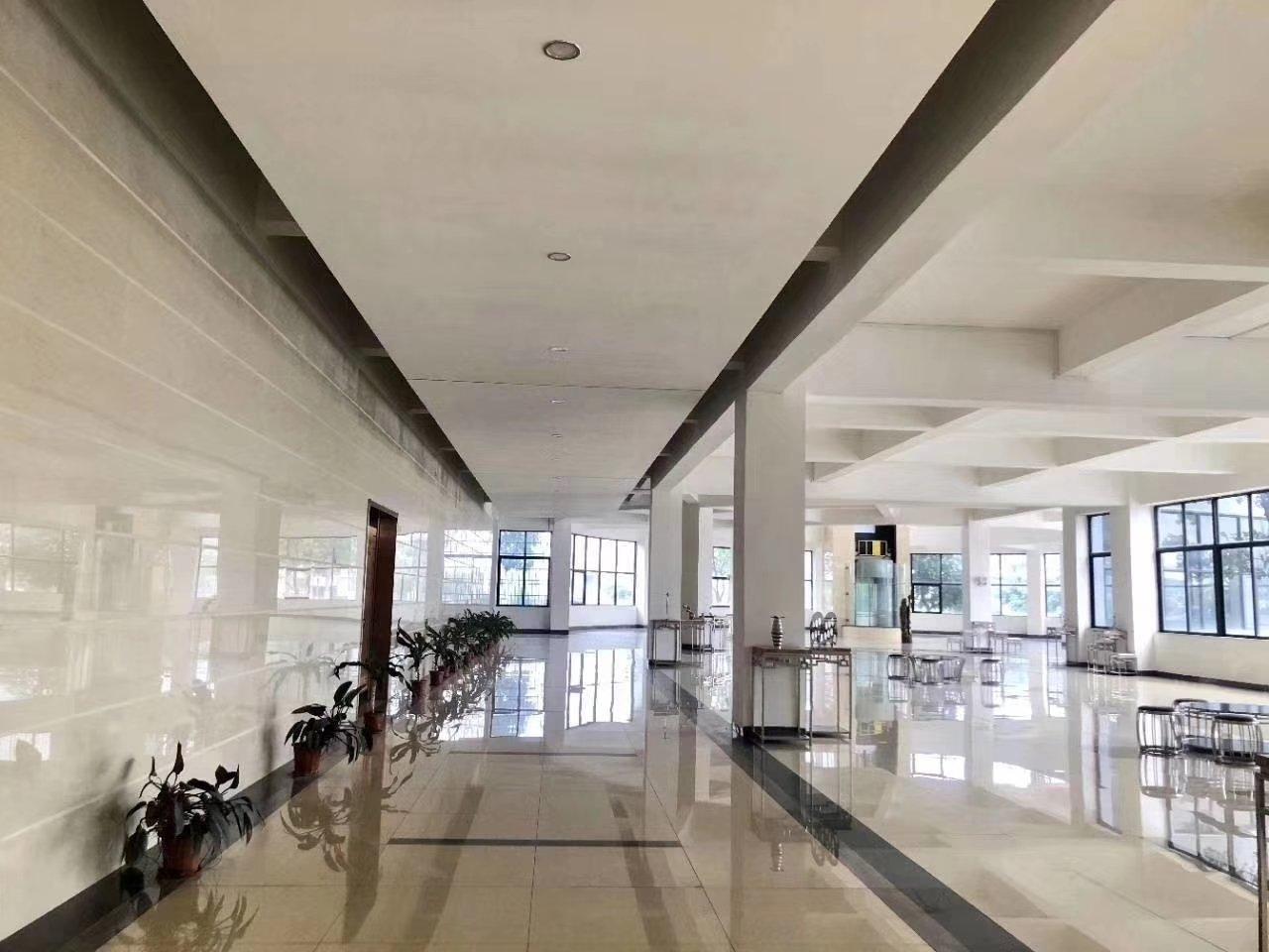 肇庆厂房占地面积24万m²,现有70000m²单一层厂房出租-图3
