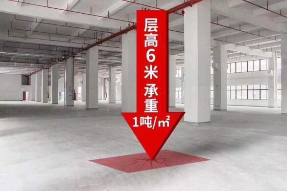 东莞常平精品高端一手红本厂房