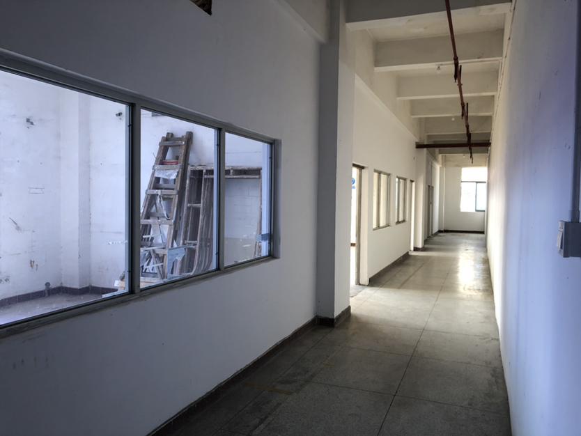 龙岗区横岗六约新出靓盘整层3880可以按照客户要求隔墙分租-图7