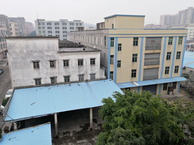 广州南沙区9700平国不动产证独门独院标准厂房出售