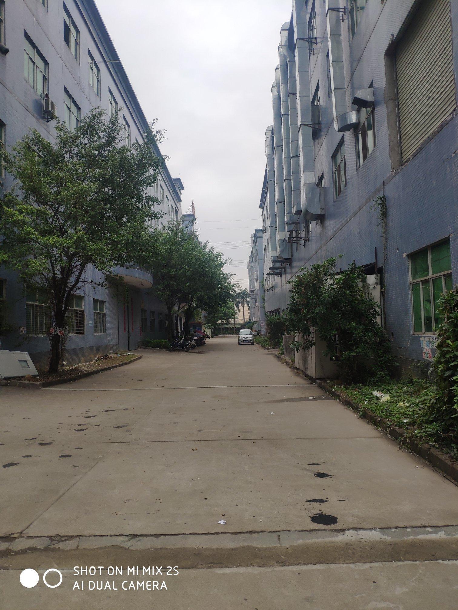 惠阳秋长标准一二楼3400平方出租-图4