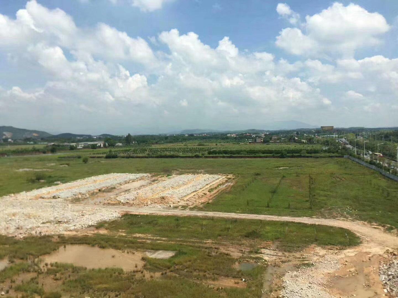 惠阳区永湖镇化工新材料园区 国有证M3类土地出售