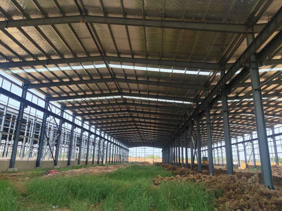 武湖地区单层钢构厂房出售