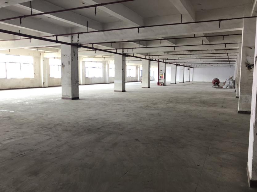 龙岗区横岗六约新出靓盘整层3880可以按照客户要求隔墙分租-图8