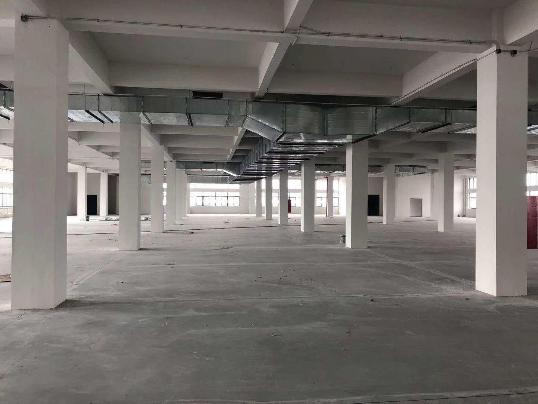 增城新塘镇广深大道新出标准厂房一二楼出租,证件齐全,可办环评-图4