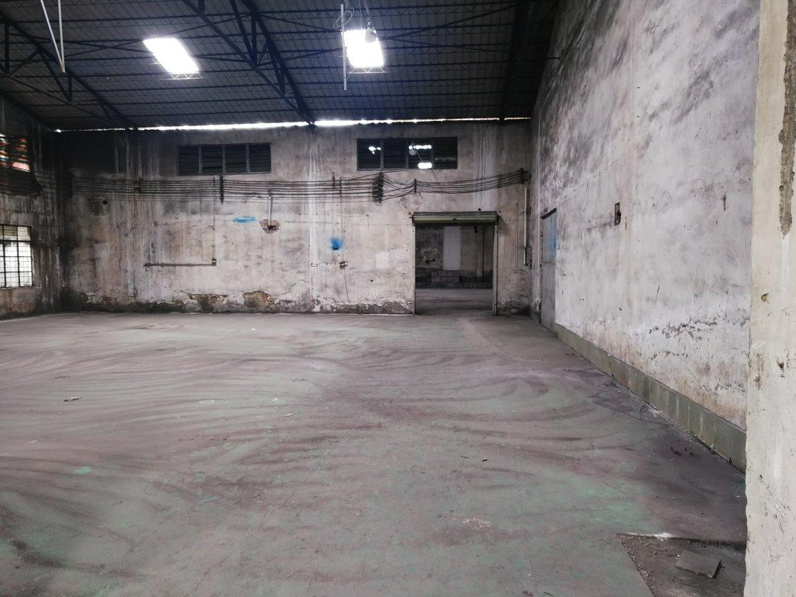 顺德勒流新出原房东厂房砖墙到顶10000平方