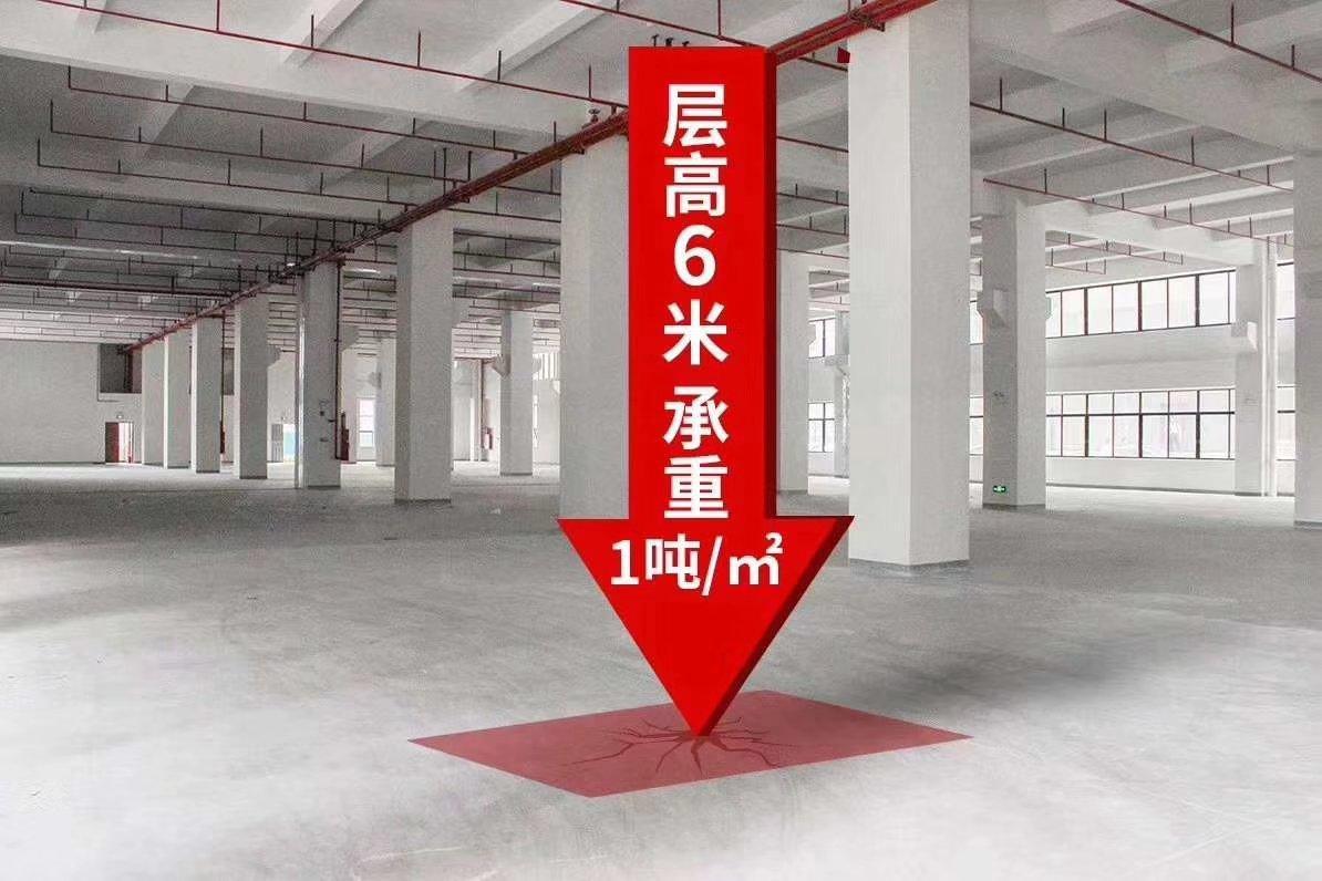 顺德区杏坛镇红本厂房出售•独立产权•百变灵活