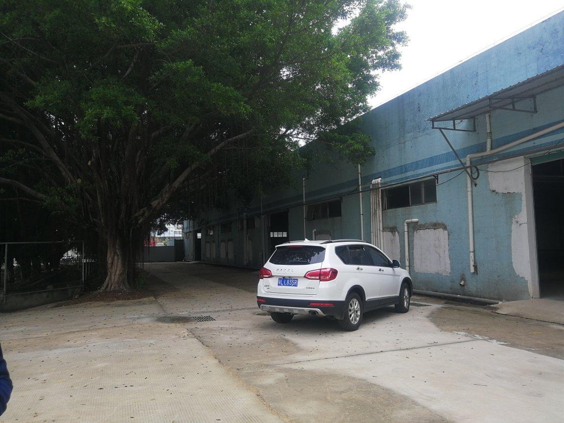 龙岗宝龙大路边独院仓库钢构万博app官方下载出租