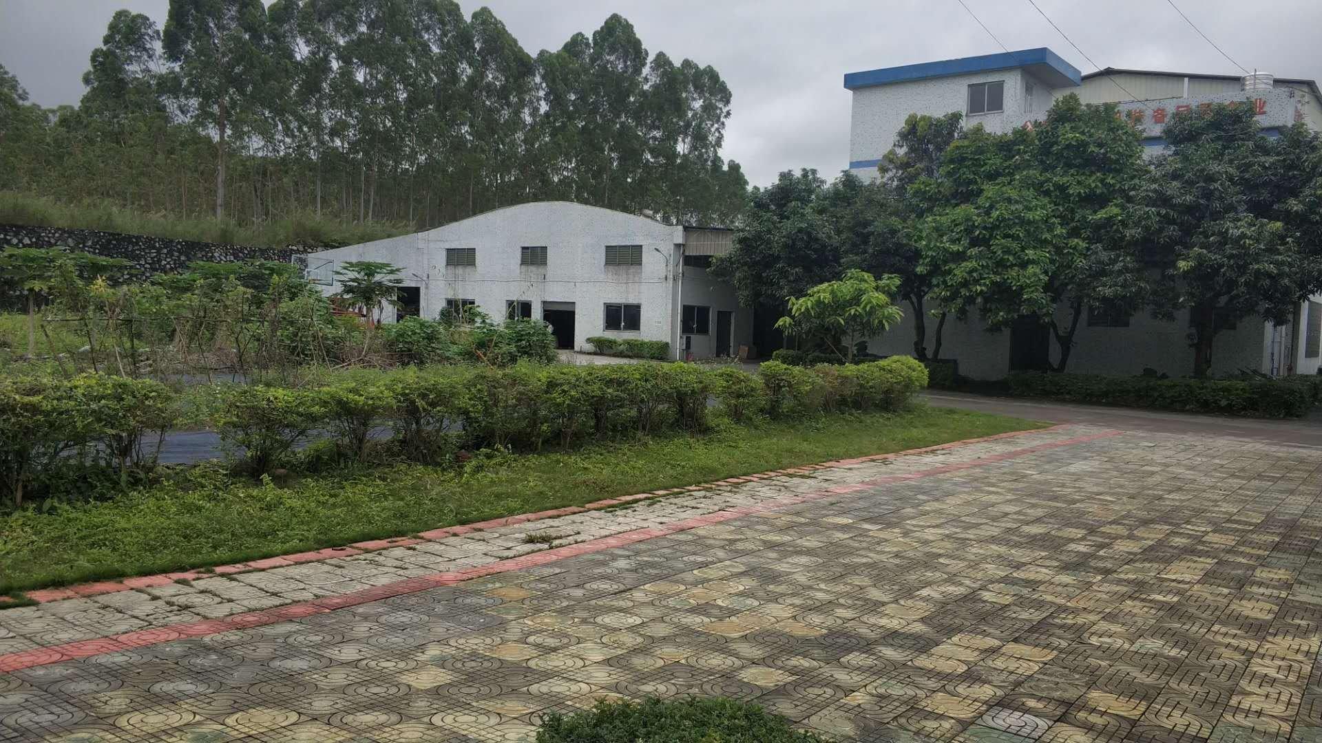 白云区钟落潭龙岗村独门独院厂房,总面积6800平米-图4