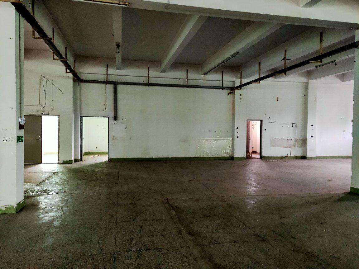 龙华大浪新百丽附近新出楼上4000平,标准厂房原房东直租-图4