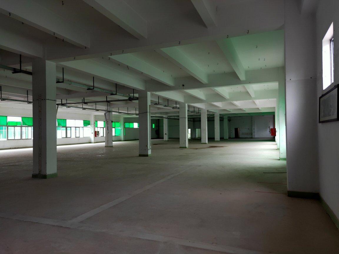 龙华大浪新百丽附近新出楼上4000平,标准厂房原房东直租-图5