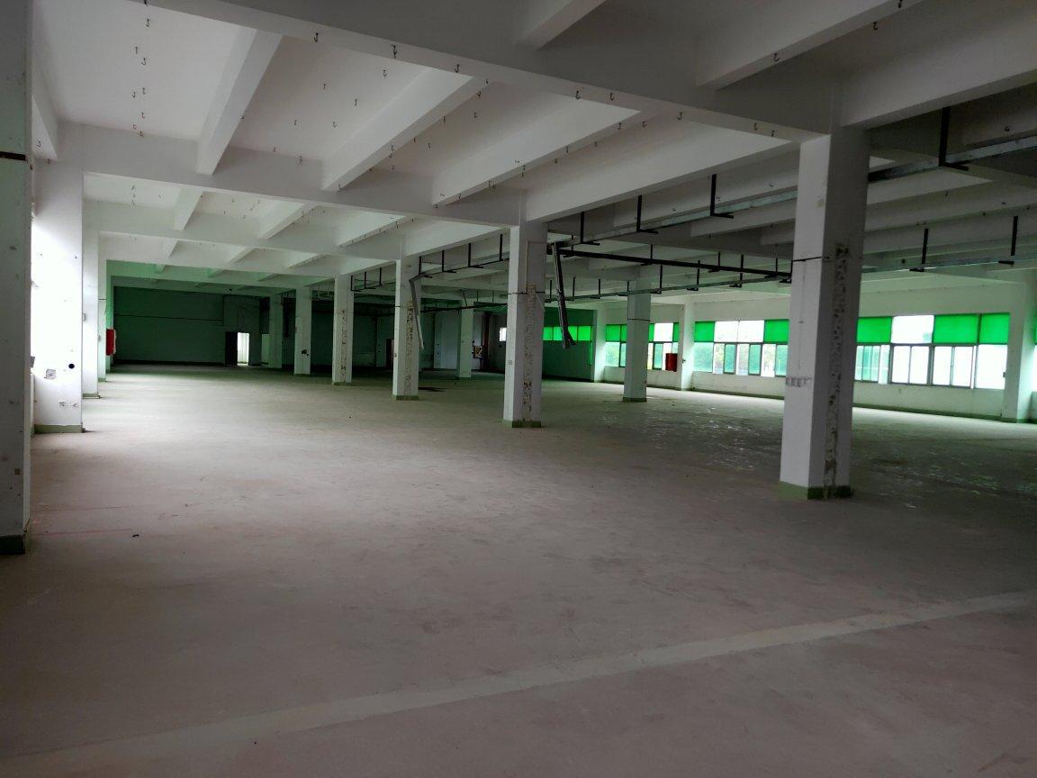 龙华大浪新百丽附近新出楼上4000平,标准厂房原房东直租