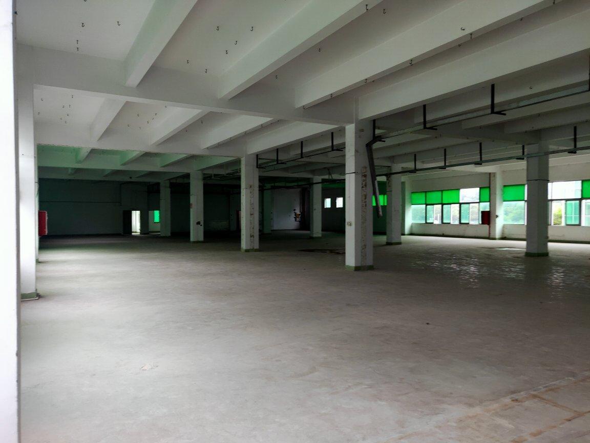 龙华大浪新百丽附近新出楼上4000平,标准厂房原房东直租-图7