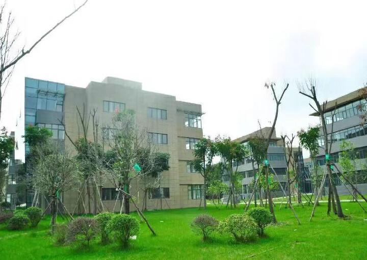 郫县独栋办公大楼出租图片3