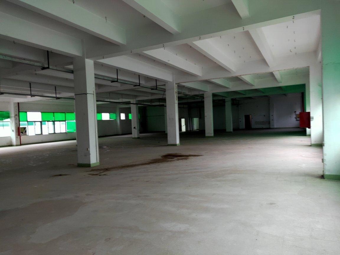 龙华大浪新百丽附近新出楼上4000平,标准厂房原房东直租-图6