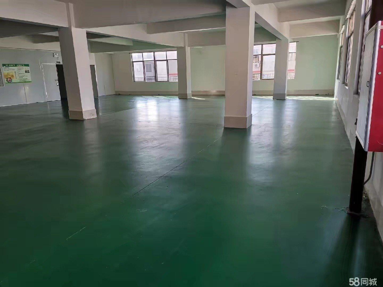 大石会江480方标准厂房出租