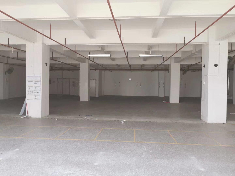 光明高新科技园区2楼800平方红本厂房-图3