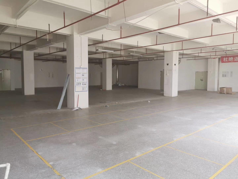 光明高新科技园区2楼800平方红本厂房-图2