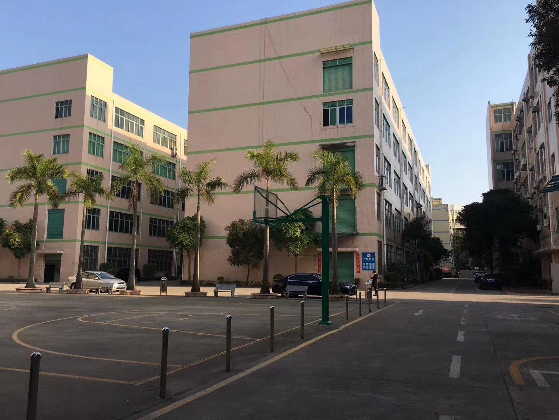 坪山石井新出二楼标准厂房1500平米带装修办公室有电梯有消防