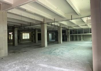 龙岗坪地坪西一楼2000平方标准厂房出租图片4