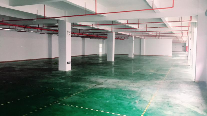 龙岗工业园3万平方红本厂房仓库200分租整层2500平带精装