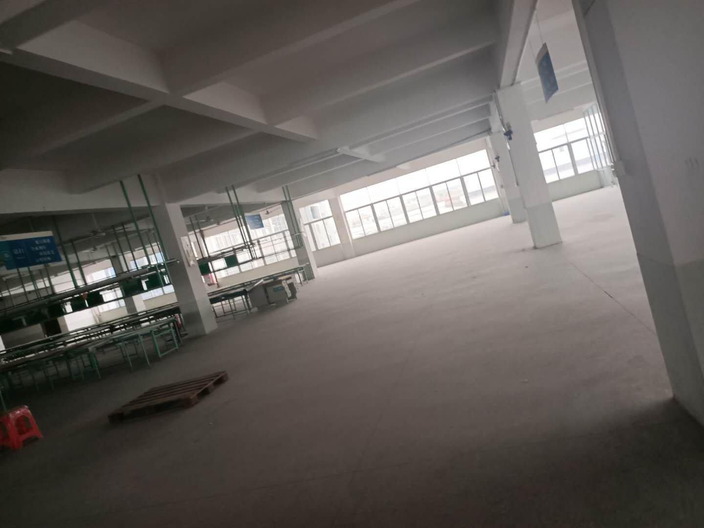 独门独院厂房精装修,原房东可办公