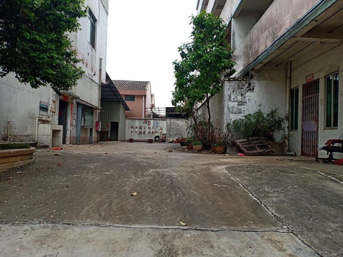 佛山市九江镇3600平米标准厂房出租,价格便宜,可以做污染