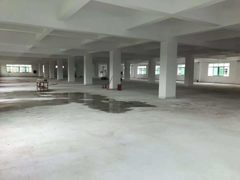 坪山碧岭新出大型工业园区独栋厂房1到4层10800平米有红本