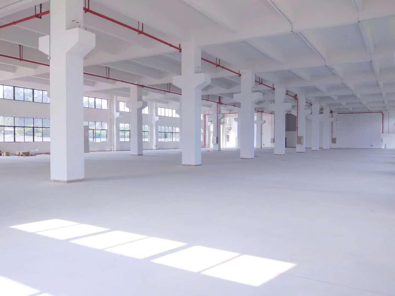 顺德均安大型工业区原房东新建独栋独院厂房12500方1-4层