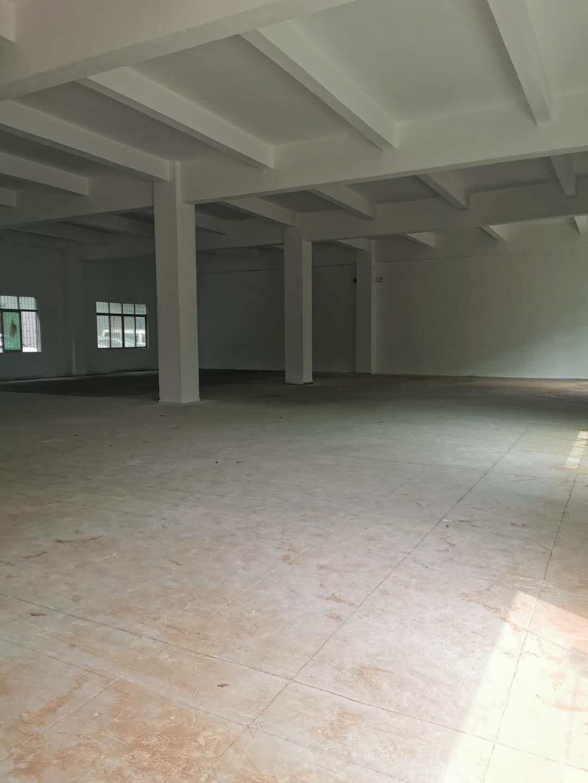 大浪浪口一楼950平价35仓库加工厂房