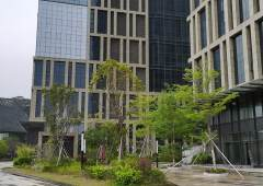 坂田地铁口独立红本写字楼60-2000平米出售可按揭