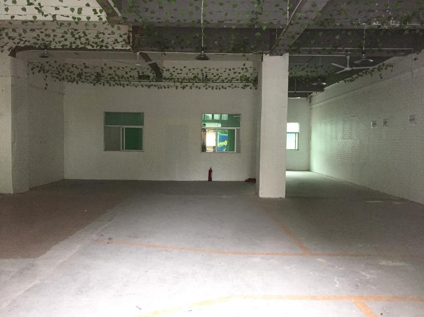 坂田独院厂房一楼仓库300平