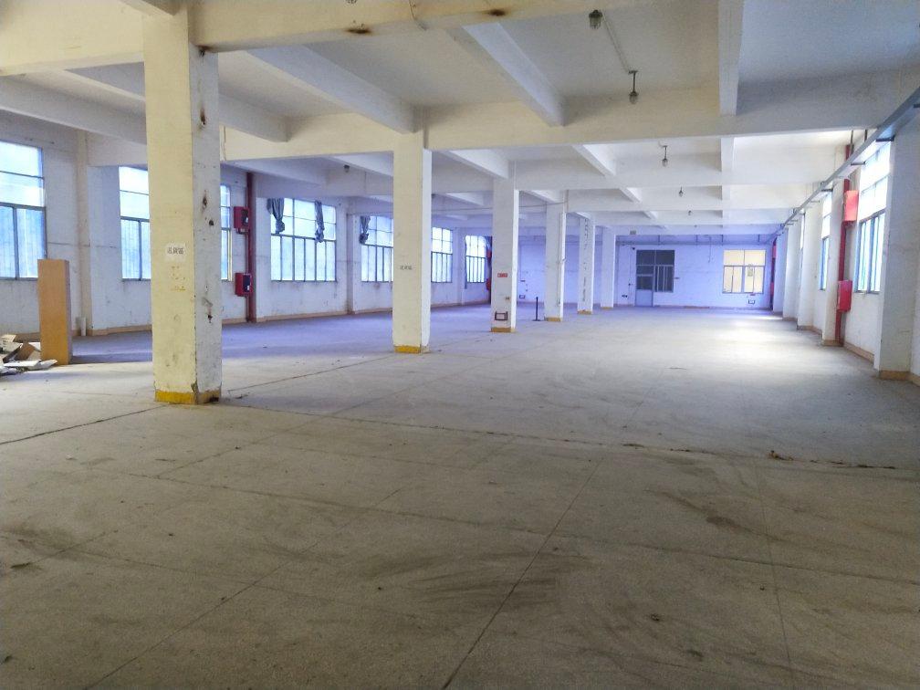 坪山六联新空出一楼1200平方厂房招租,高5米!红本厂房!