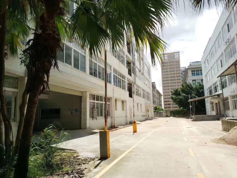 龙岗宝龙工业园1楼3200平米厂房仓库出租!环境优美
